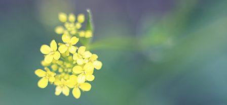 5 ważnych spraw – Odpuść je sobie i żyj o wiele spokojniej oraz szczęśliwiej