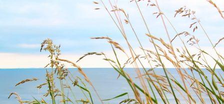 Spokój i wewnętrzna równowaga: 7 niezawodnych strategii dla chronicznie zestresowanych i zatroskanych