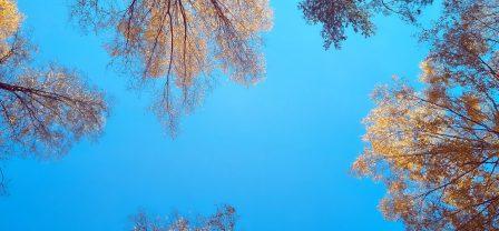 Mindfulness – 3–punktowy miniwykład dla początkujących lub sceptycznie nastawionych