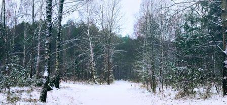 Spokój, pogoda ducha i równowaga wewnętrzna podczas świątecznej wrzawy, czyli bestresowe swieta w 4 krokach