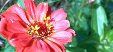 5 pieruńsko ważnych powodów, żeby siebie doceniać